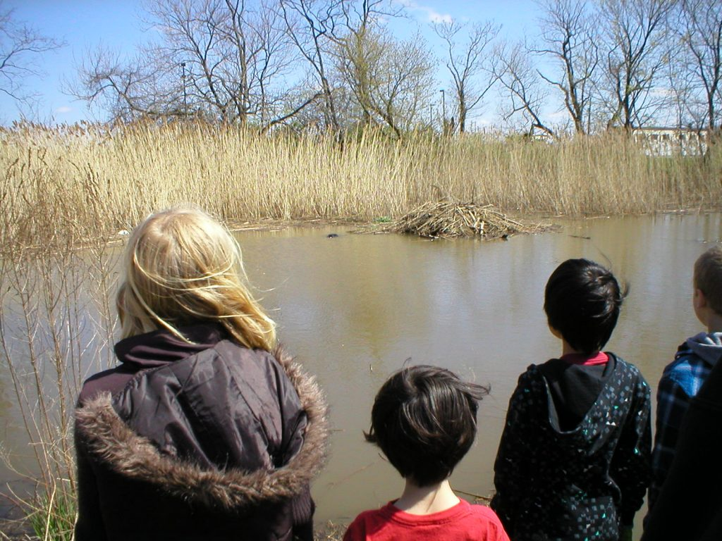 church members visiting wetlands